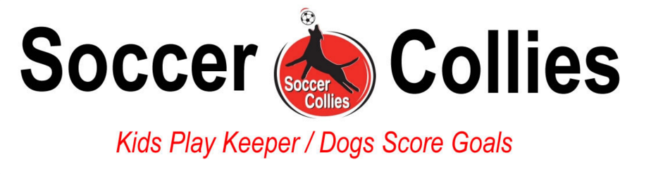 soccer collies